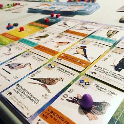 Wingspan European Bordspel